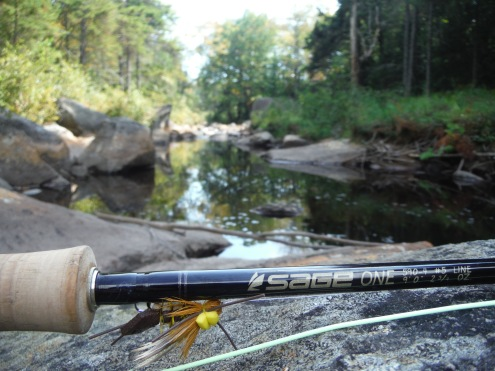 Way back in the Adirondacks on a Brook Trout stream