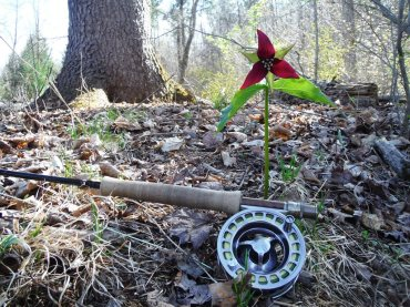 Fly Rods and Trilliums